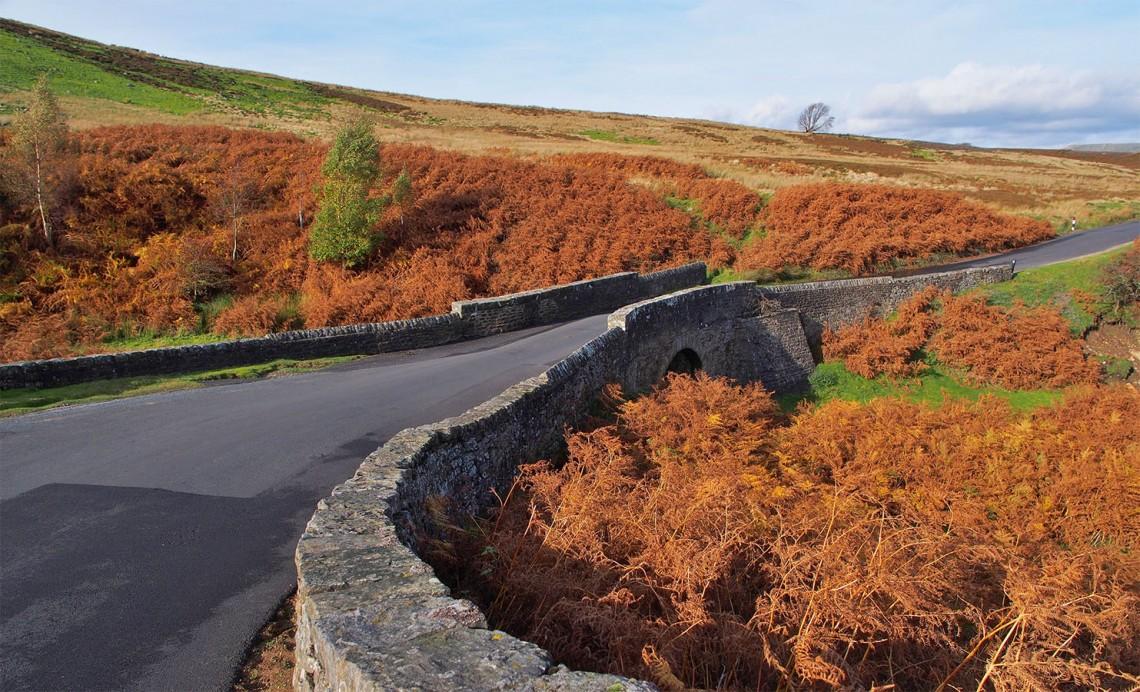 Grinton Moor, Yorkshire Dales, England.