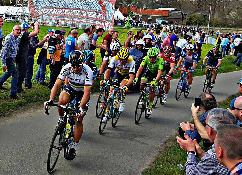 peter sagan tour flanders 2016
