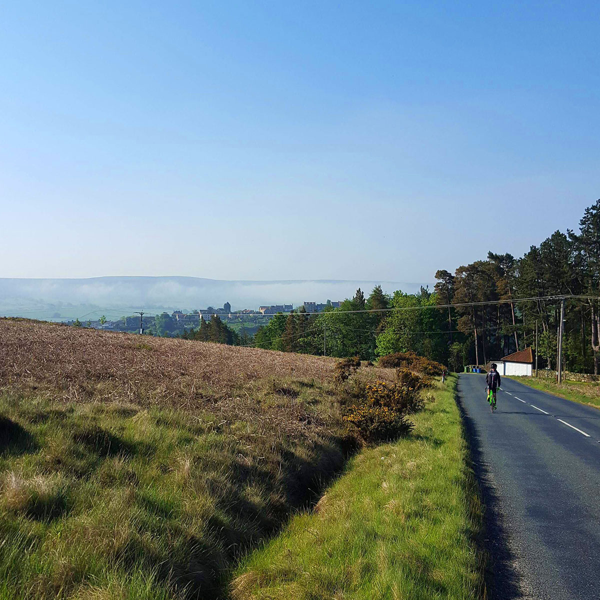 yorkshire beast flat section