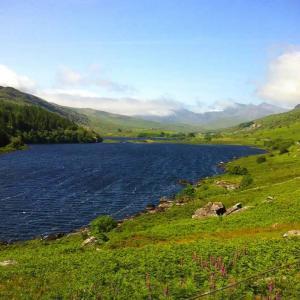 bala-lake-heatwave-north-wales-min